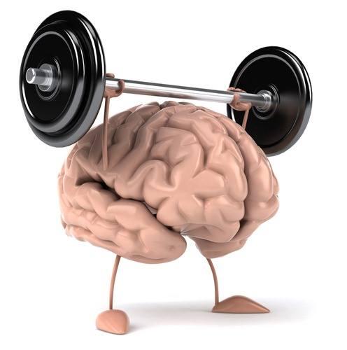 Academia dos cerebros   imagem perfil