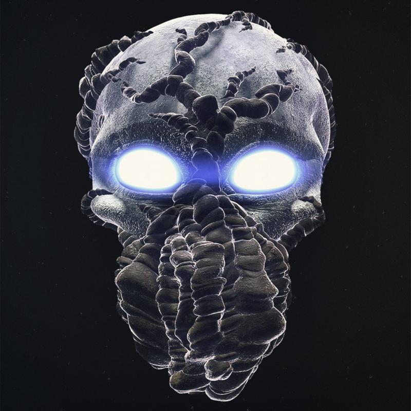 Caveira perfil