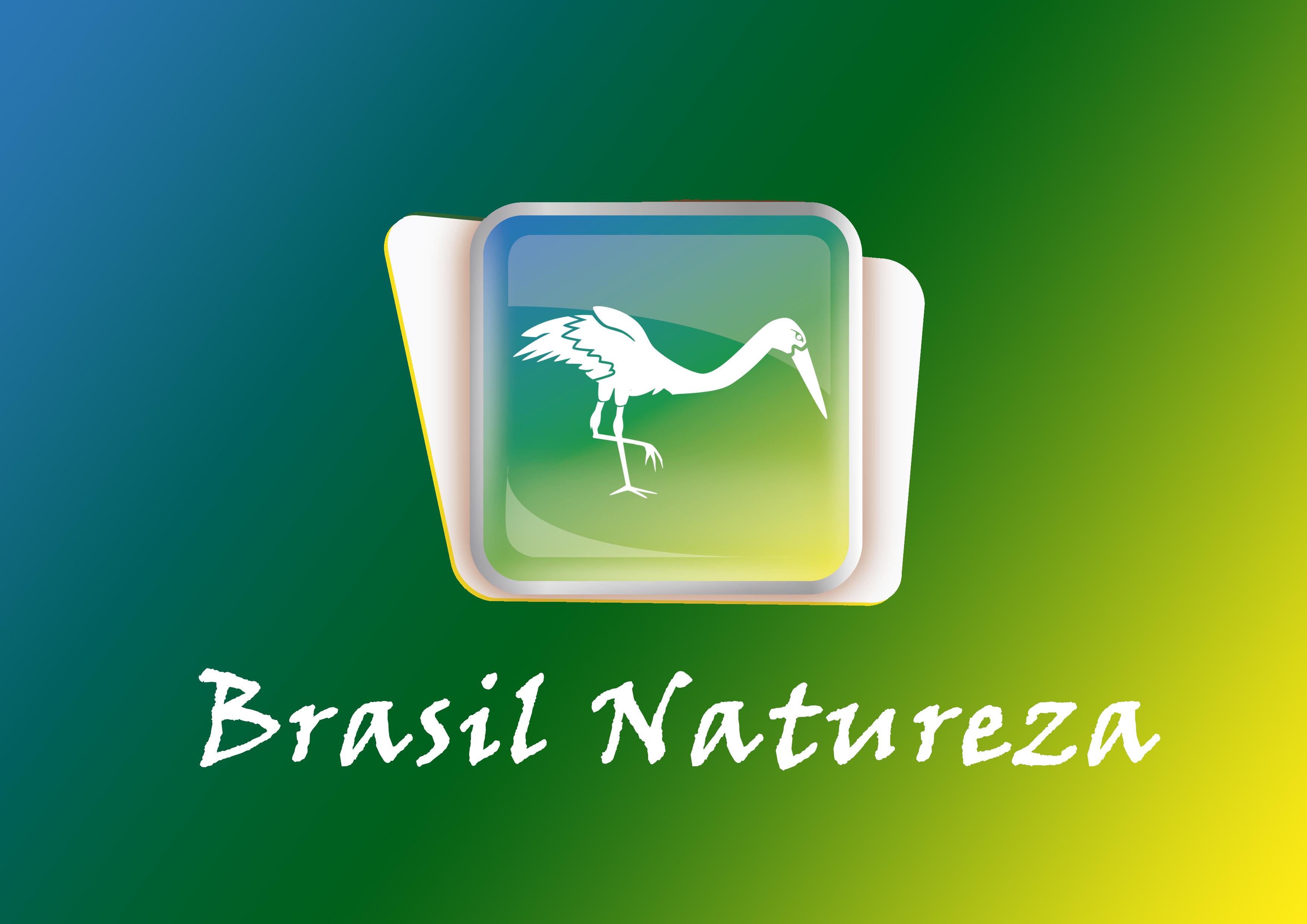 Brasil natureza inverso