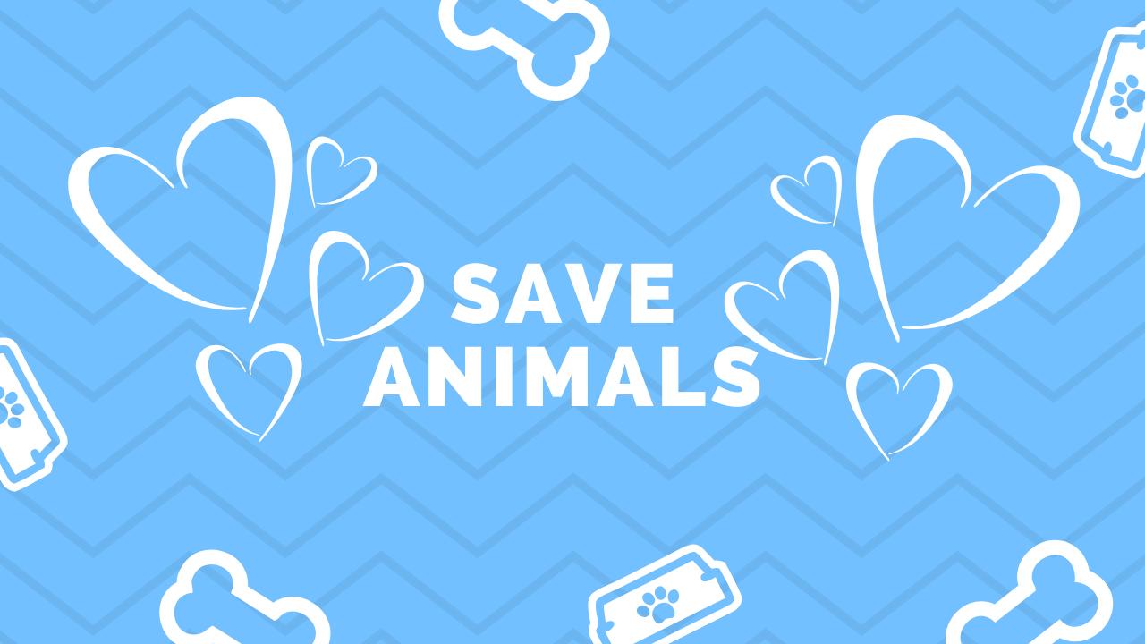 Capa save animals