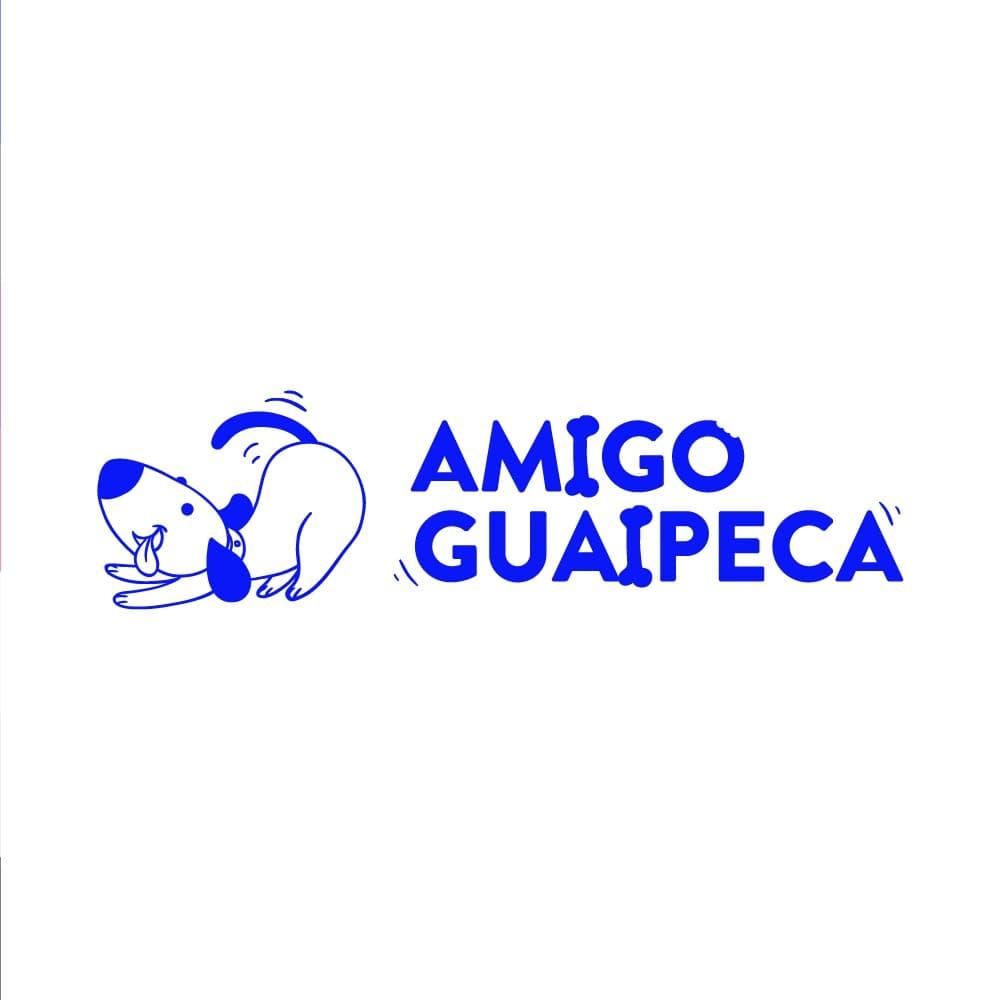Amigoguaipeca capa 1